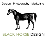 Black Horse Design (Wirral Horse)