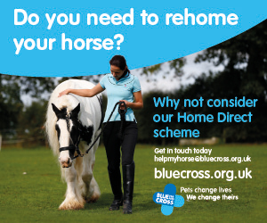 Blue Cross 2020 A (Wirral Horse)