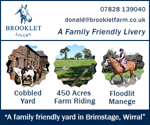 Brooklet Livery 243 (Wirral Horse)