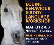 Justine Harrison Workshop March 2019 (Wirral Horse)