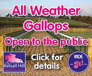 Kelsall Hill Gallops (Wirral Horse)