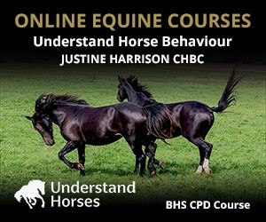 UH - Understand Horse Behaviour (Wirral Horse)